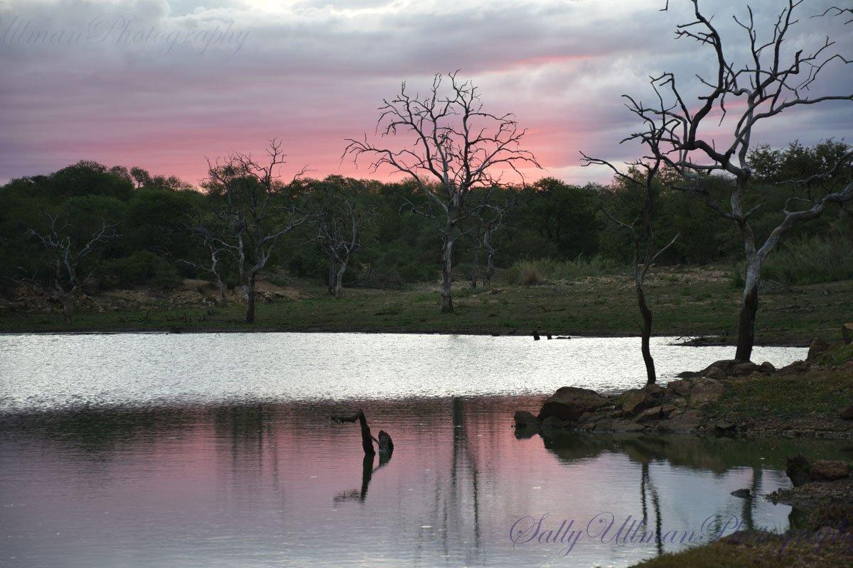 Hippo Pond Sunset
