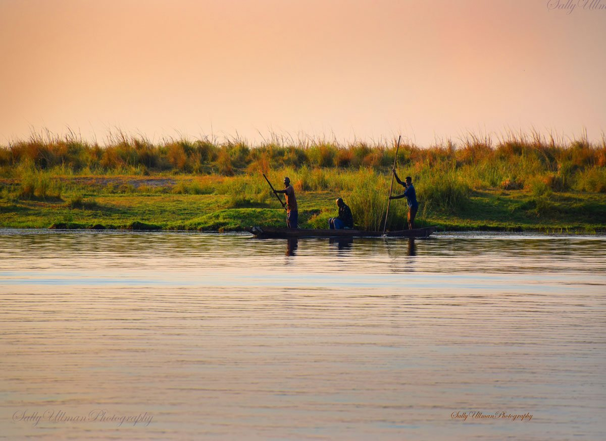 Fisherman on Chobe